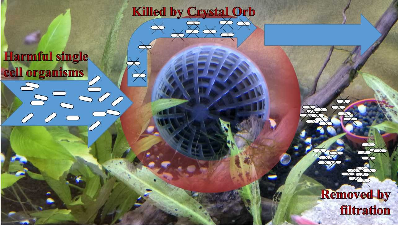 Crystal Orb water clarifier -patented insoluble NanoMaterial -ultimate microbe control alternative to UV -kill bacteria fungi algae -maintain pH -no extra installation -safe to human animals plants by COPPWARE (Image #4)