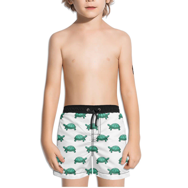 FullBo Green Turtles Pattern Little Boys Short Swim Trunks Quick Dry Beach Shorts