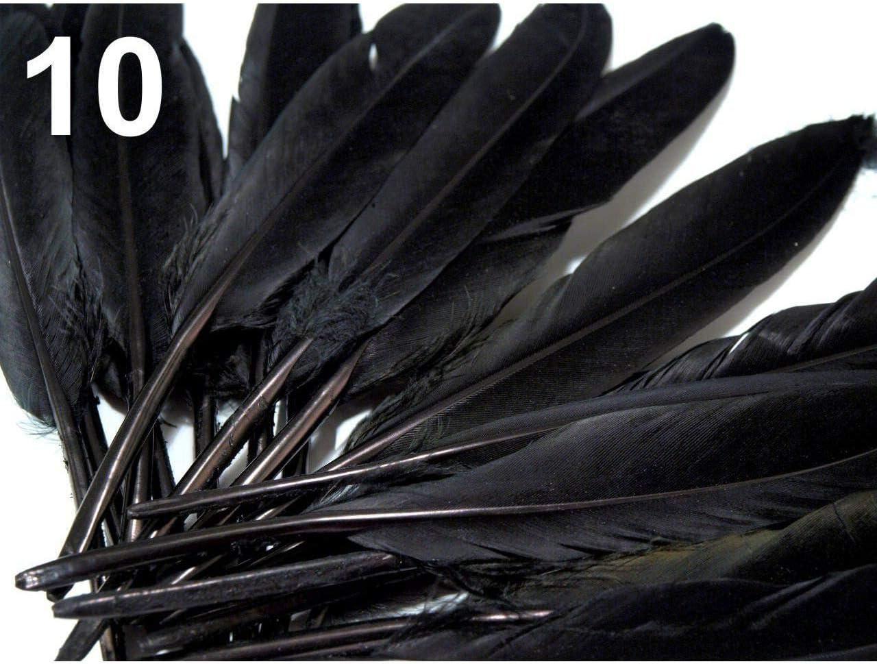 de Plumes Et de Featherlets 1bag Rouge D/écoratif en Plumes de Canard Longueur de 9 /à 14 cm D/écorations