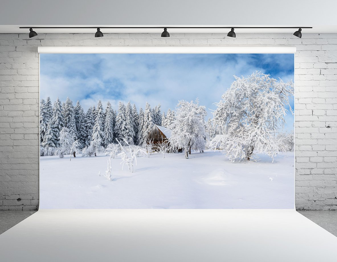 Kate 10x6.5フィート 雪の森 写真 背景 屋外 景色 カスタマイズフォトスタジオ小道具   B07GBVQSXS