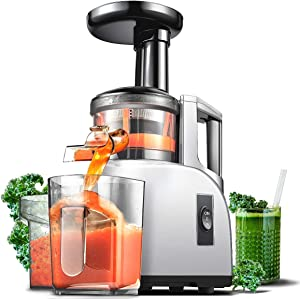 Slow Juicer AMZCHEF Slow Masticating Juicer Extractor Slow Cold Press Juicer Machine Quiet Motor Reverse Function Portable Handle Brush&Vegetable Fruit Juice Jugs BPA Free 55RPM