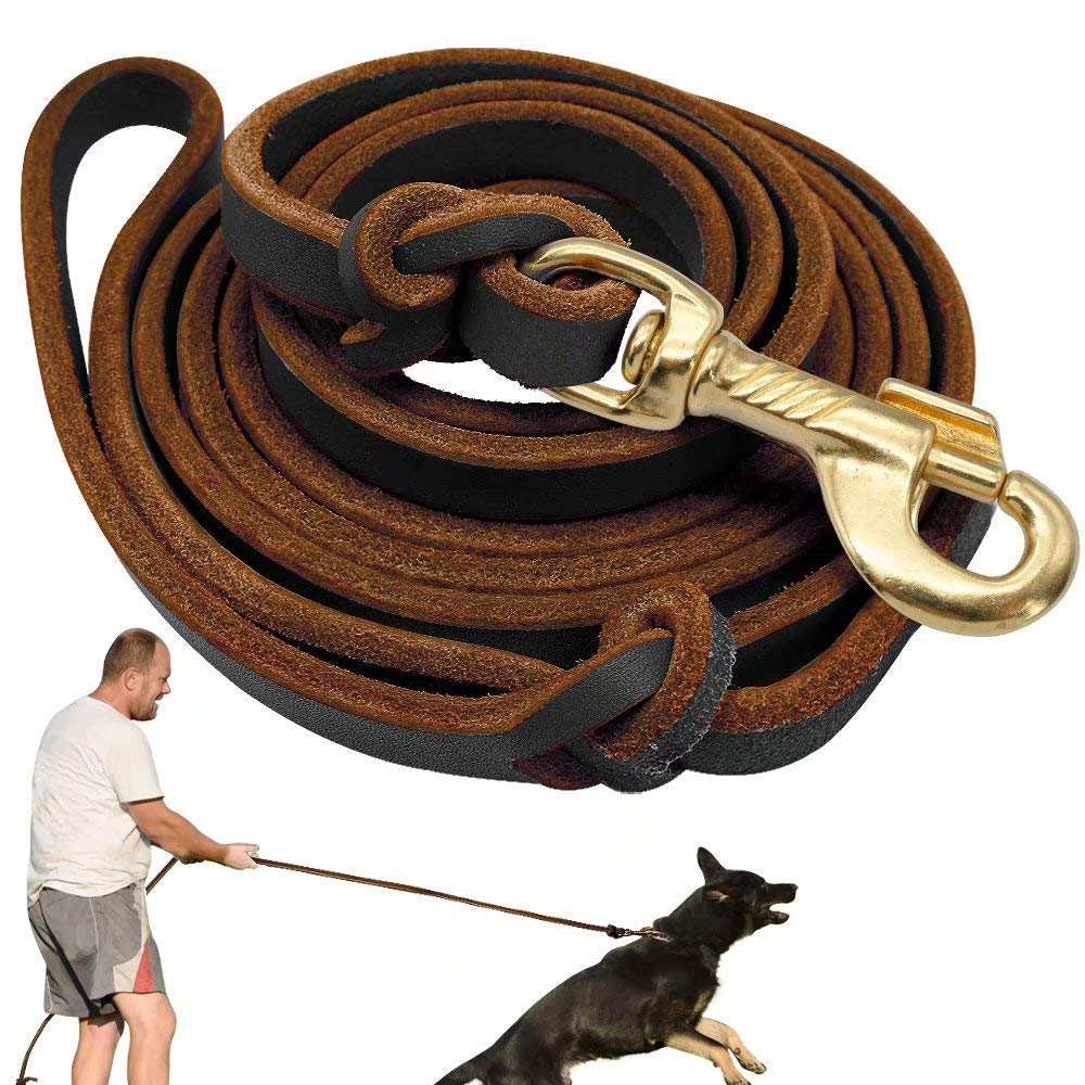 Brown Didog Genuine Leather Dog Leashes, 8 Foot Professional Training Heavy Duty Dog Leashes, Fit Medium Large Dogs Walking Training Competition, Brown