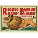Ringling Bros and Barnum and Bailey - Combined Circus (lion) Vintage Poster USA c. 1928 (12x18 Art Print, Wall Decor Travel Poster)