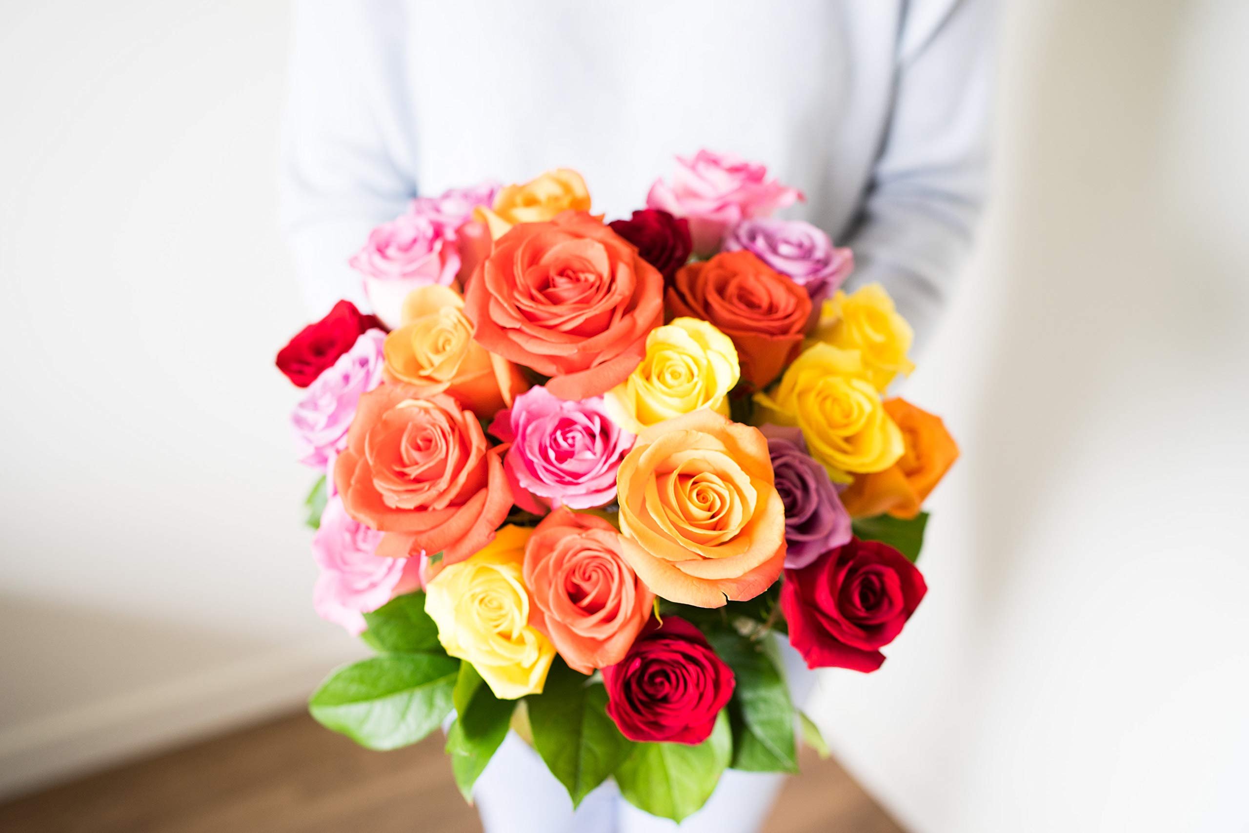 Flowers - Two Dozen Rainbow Roses with Godiva & Bear (Free Vase Included) by From You Flowers (Image #4)