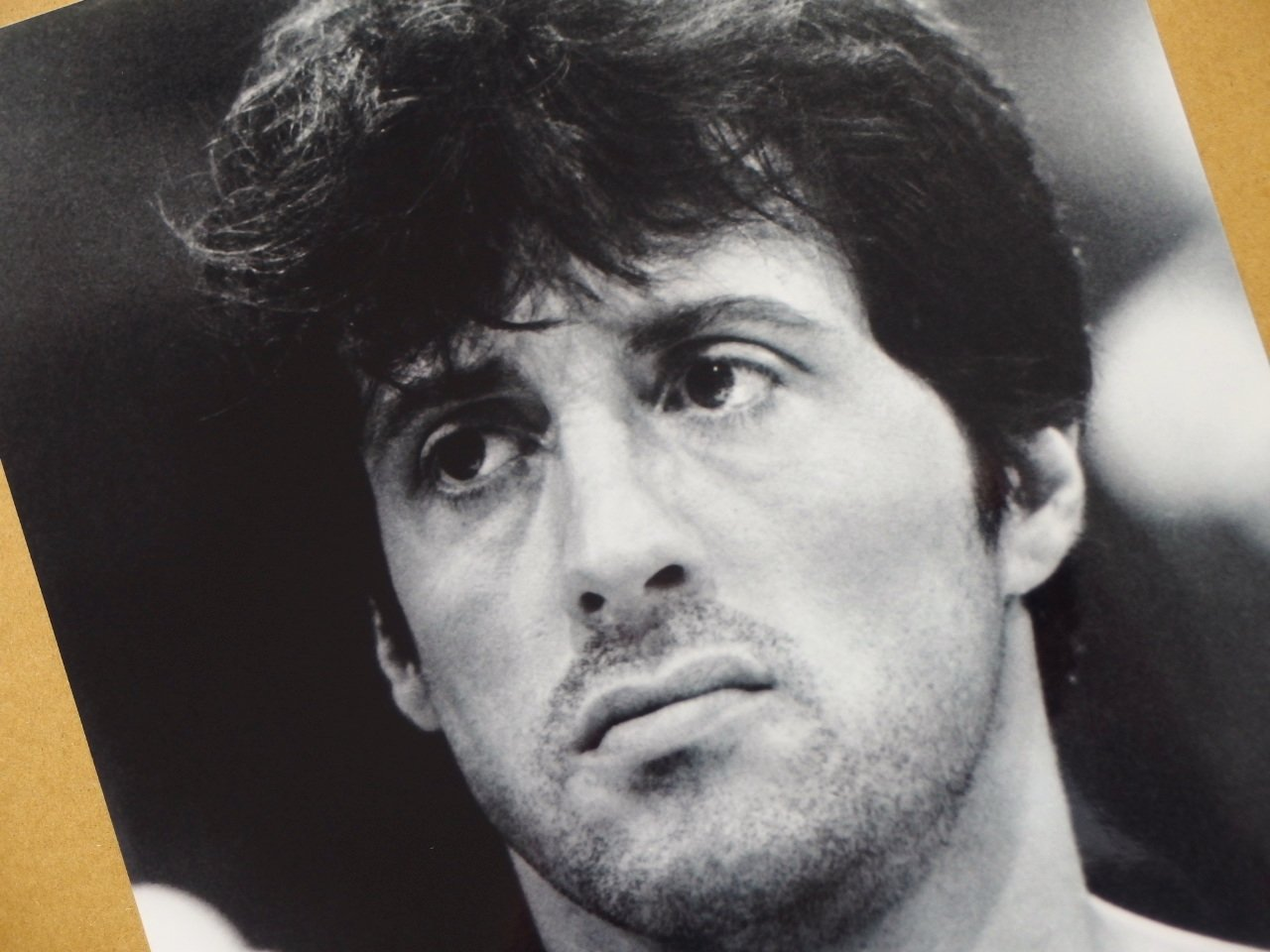 Photo 8x10 Movie Images Rocky Sylvester Stallone #4269