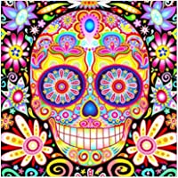 alinementpai DIY Diamond Painting by Number Kits, Diamond Embroidery Paintings Art Craft for Home Wall Decor, Skull Flower
