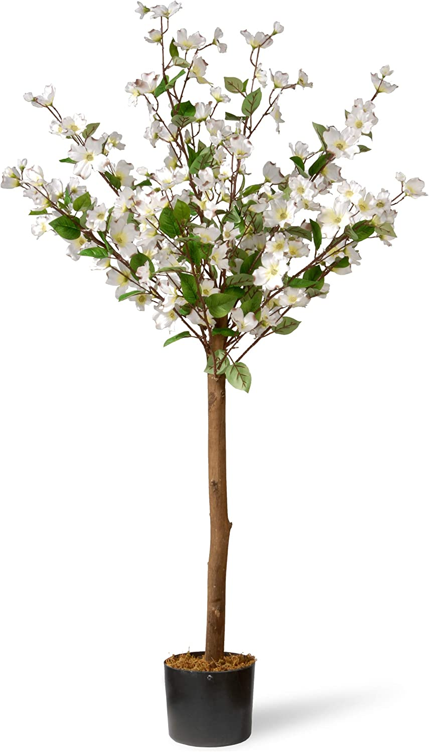 National Tree 4 Ft. Dogwood Tree, White