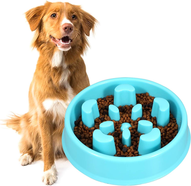 KASBAH Slow Feeder Dog Bowl, Anti-Gulping Dog Bowl Bloat Stop Water Dog Bowl for Small/Medium Dogs