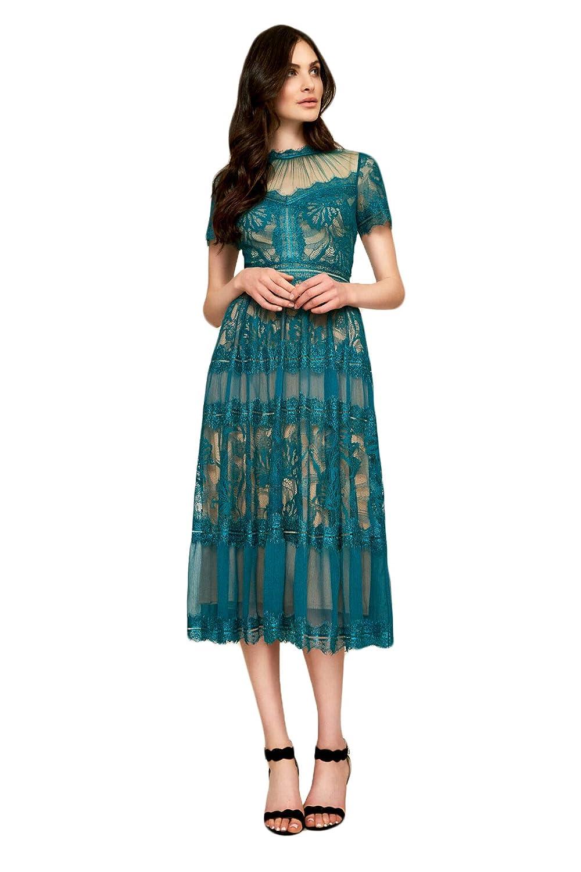 e3bc8d934bb Tadashi Shoji T-Length Lace Dress