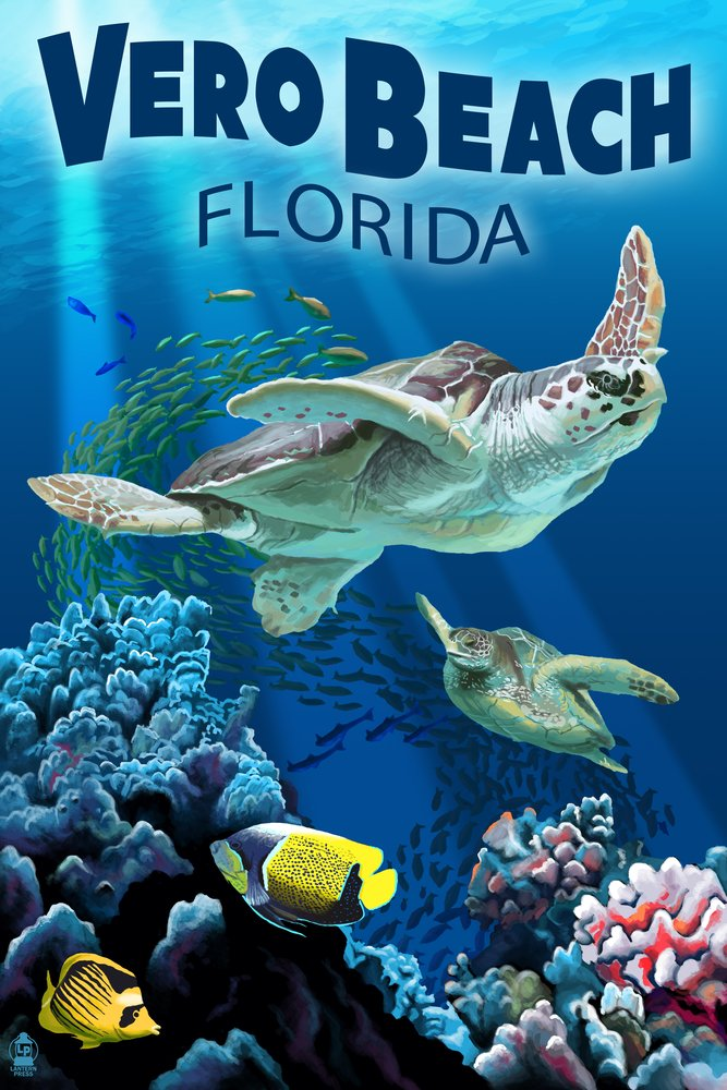 Sea Turtles – Veroビーチ、フロリダ州 36 x 54 Giclee Print LANT-42166-36x54 36 x 54 Giclee Print  B017E9WMPU