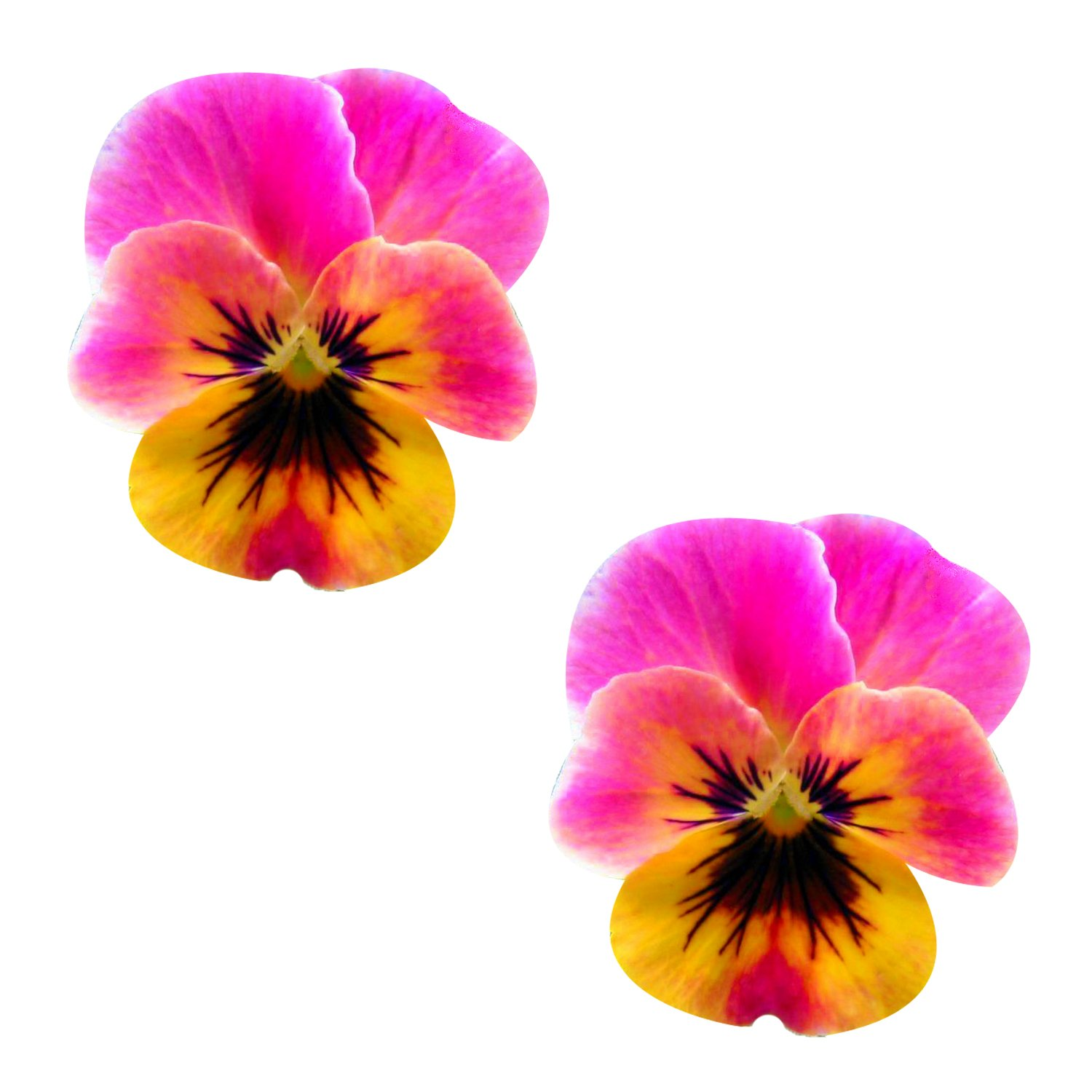Neva Nude Freaking Awesome Flower Pansy Nipztix Pasties Nipple Covers