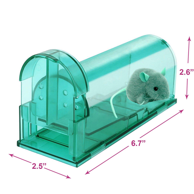 Amazon.com: Humane Mouse Traps, Set of 4, Cruelty Free Live Catch ...