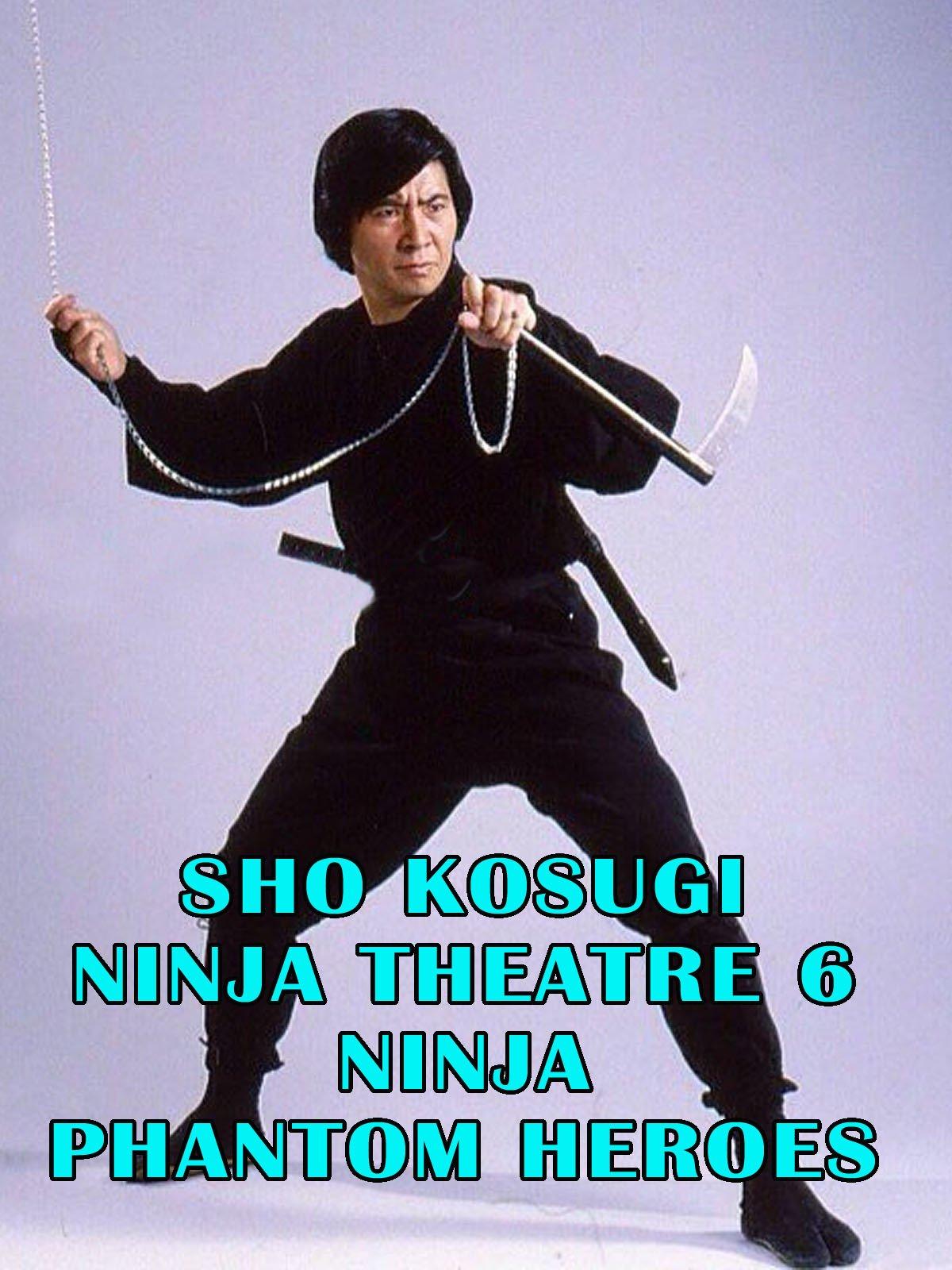 Amazon.com: Sho Kosugi Ninja Theater Vol.6 Ninja Phantom ...