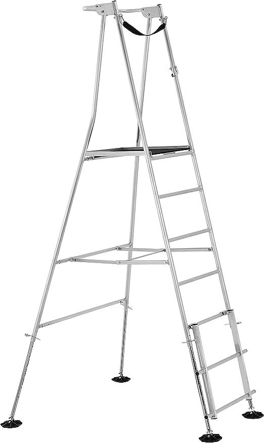 Henchman Escalera de Plataforma de jardín de Alta Escalera: Amazon.es: Jardín