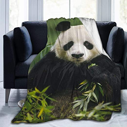 Delerain Cute Bear Soft Throw Blanket 40x50 Lightweight Flannel Fleece Blanket for Couch Bed Sofa Travelling Camping for Kids Adults
