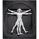 Design Toscano Vitruvian Man Wall Sculpture