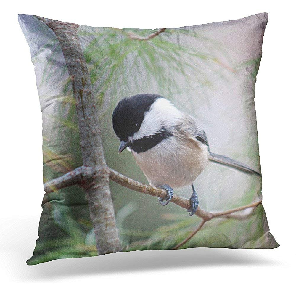 Personalized Throw Pillow Cover Cute Bird Black Chickadee Branch Soft Square Custom Pillowcases Zipper Bed Sofa Car Decor Cushion Cover GAMSJM
