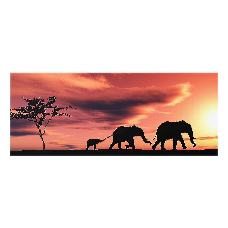 HxB: 50cm x 125cm Bilderwelten Spritzschutz Glas Panorama Quer Savannah Elefant Family