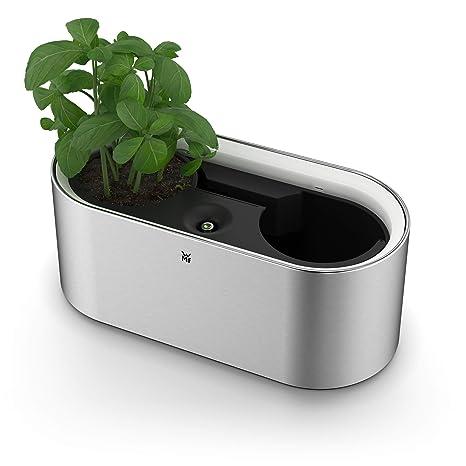 WMF Ambient Kräuter home elektrich Kräutergarten (für 2 Blumentöpfe,  Kräutertopf mit Selbstbewässerungssystem bis zu 4 Tage, Easy touch LED ...