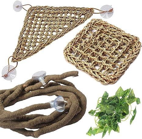 PIVBY Hamaca flexible para hábitat con dragones barbudos, con ventosas para escalada, camaleón, lagartos, gecko, serpientes