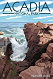Acadia National Park, Maine - Thunder Hole Day (9x12 Art Print, Wall Decor Travel Poster)