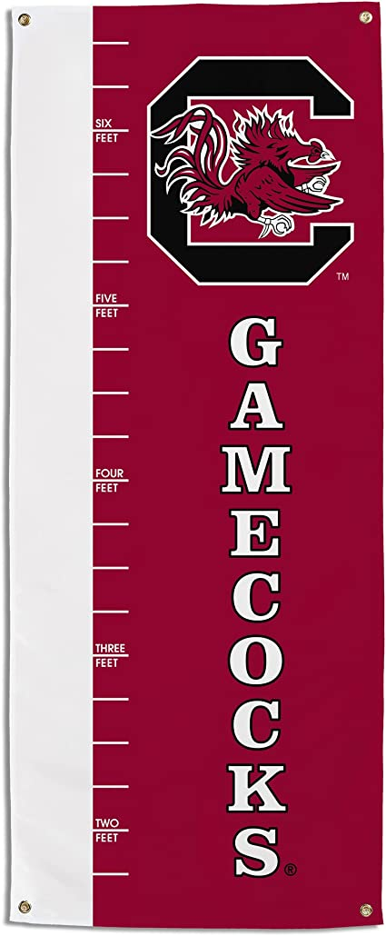 28 x 40-Inch NCAA South Carolina Fighting Gamecocks 2-Sided Banner with Pole Sleeve