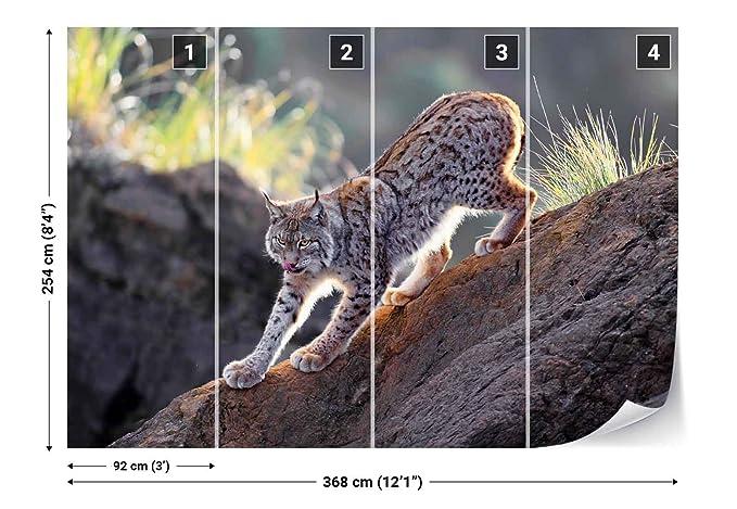 Photo Wallpaper Wall Mural Rock Lynx Cat Predator Licking Theme