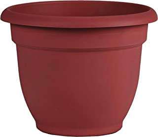 "product image for Bloem AP1613 Ariana Self Watering Planter 16"" Burnt Red"