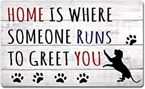 FZYTMY Funny Doormat Home is Where Someone Runs to Greet You Indoor Outdoor Entrance Floor Mat Home Front Door Mat Non Slip Backing 23.6 X 15.7 Inch
