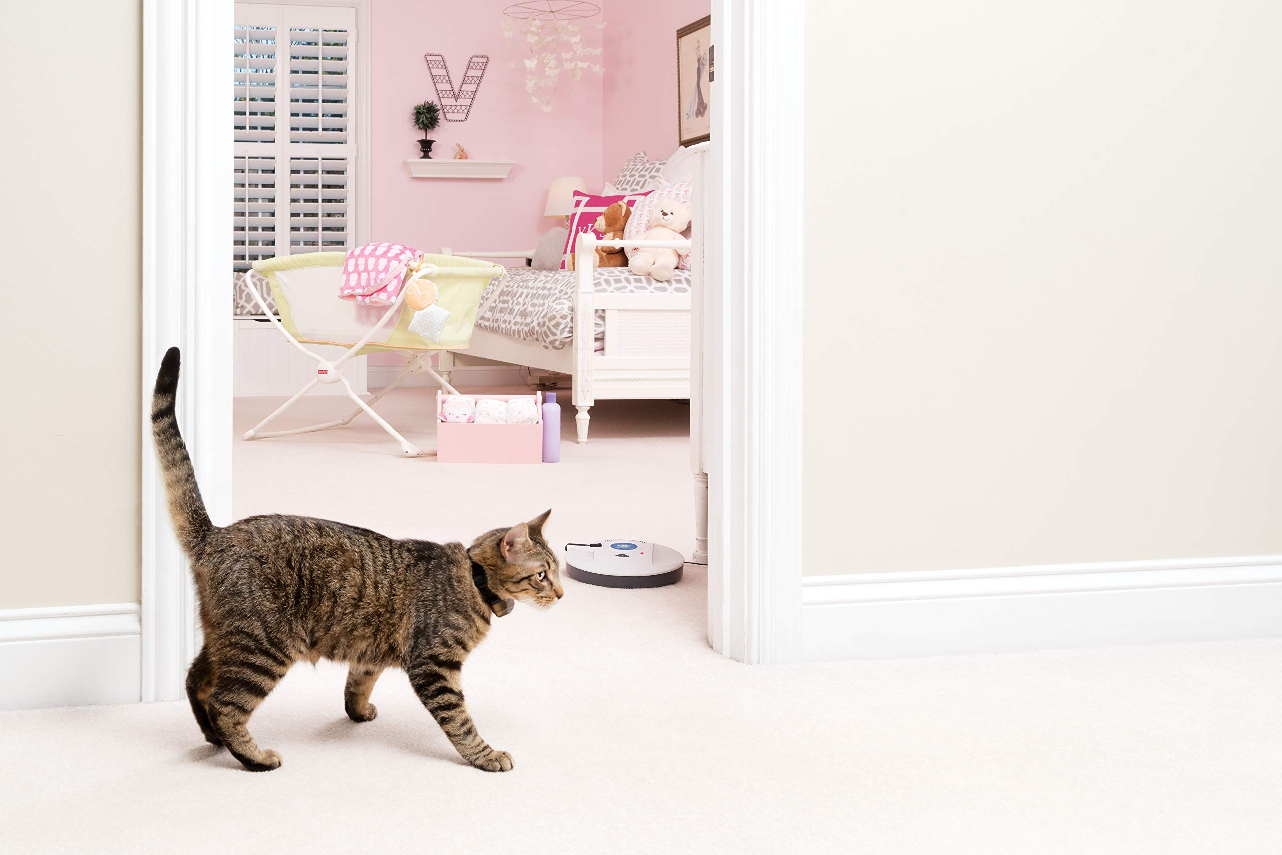 PetSafe Indoor Radio Fence for Cats and Dogs by PetSafe (Image #4)