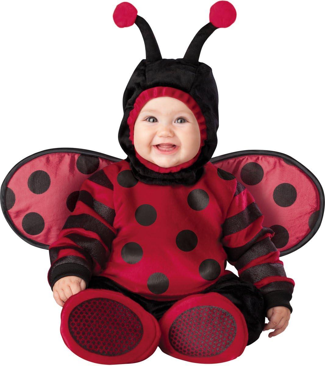 Disfraz de mariquita voladora para bebé - 6-12 meses: Amazon.es ...