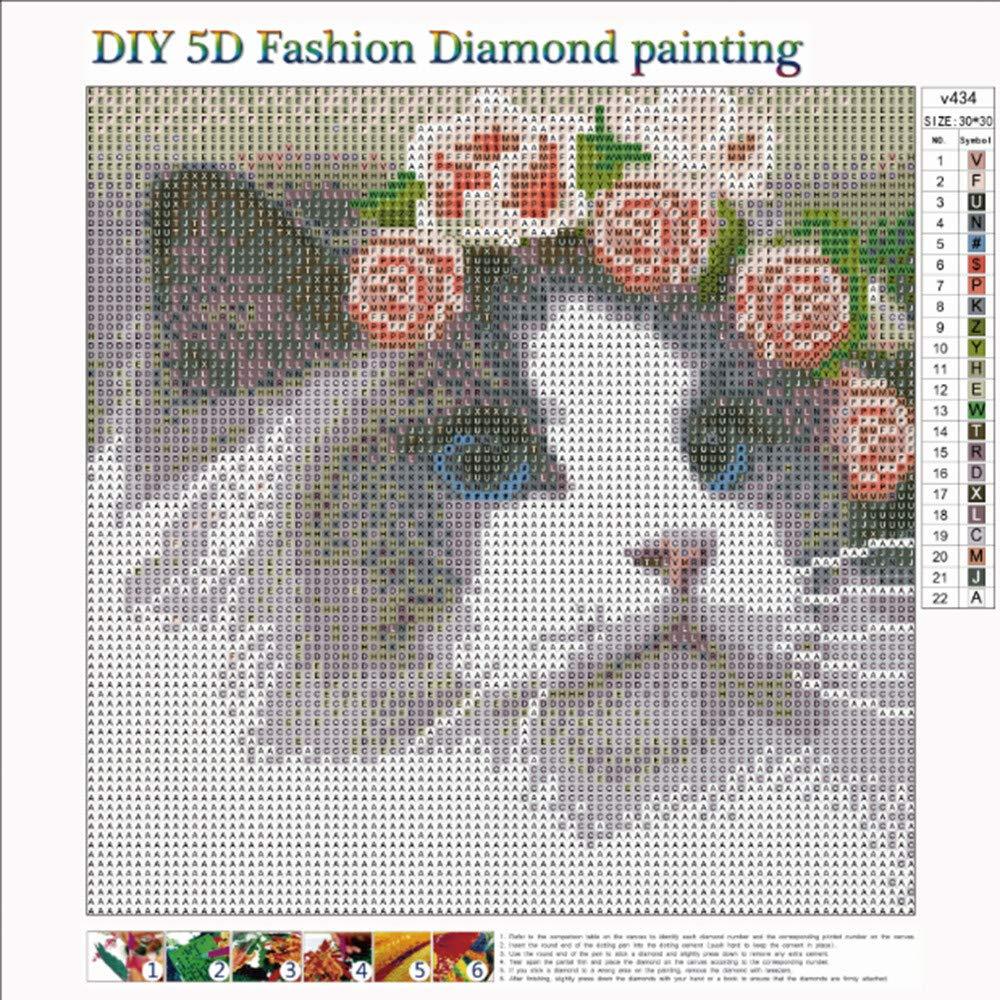 5D Diamond Painting,