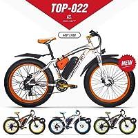 eBike_RICHBIT VTT Vélo électrique Hybride Homme de Montagne RLH-022 1000 W 48 V 17 Ah
