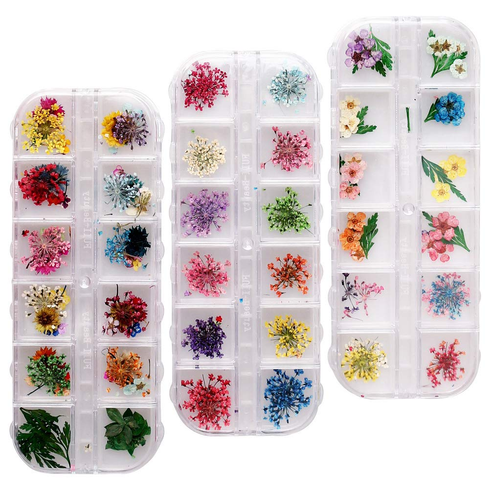 nuoshen 36 Colors Nail Dried Flowers, 72 pcs Natural Dried Flowers for Nail Art 3D Nail Art Accessories Kits for Nail Decor