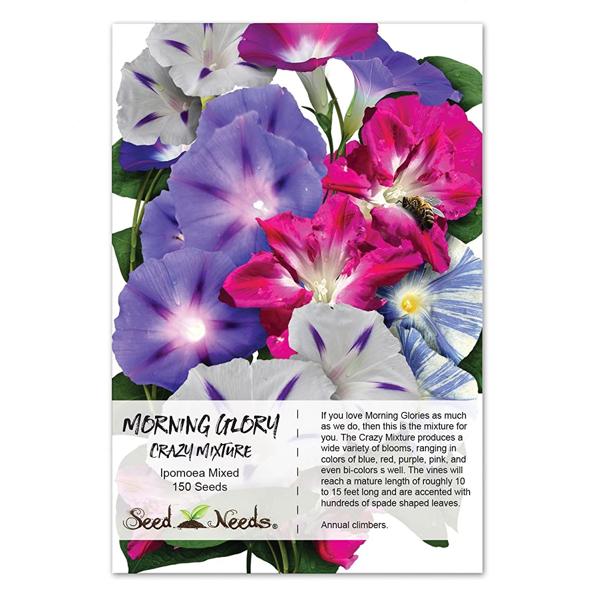 Package of 150 Seeds, Morning Glory Crazy Mixture (Includes a Variety of Colors & 10+ Species) Non-GMO Seeds by Seed Needs