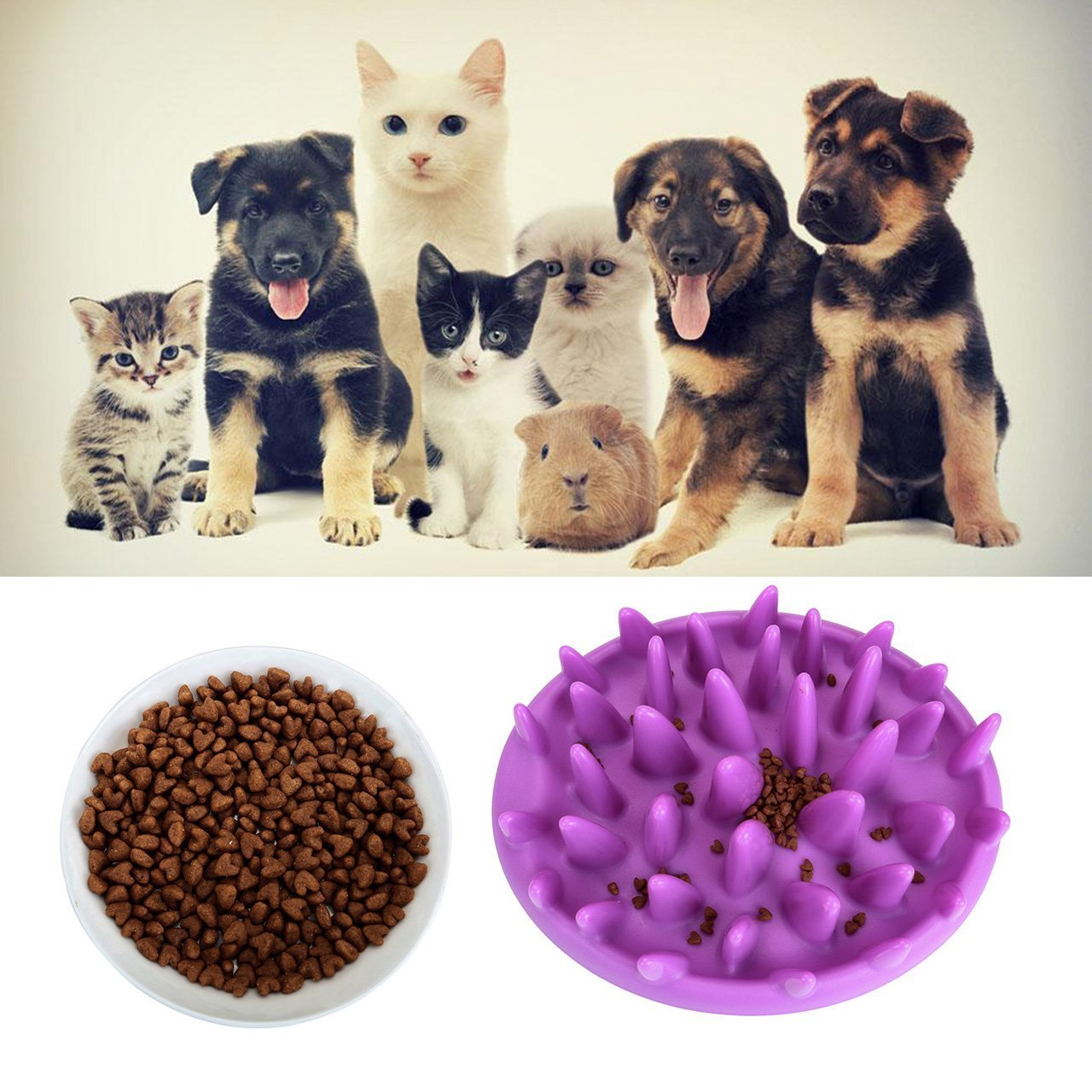 CozyCabin Dog Food Bowl Interactive IQ Non-Toxic Rubber Slow Feeder Toy Pet Food Feeder for Training Playing Chewing Tilly Shop