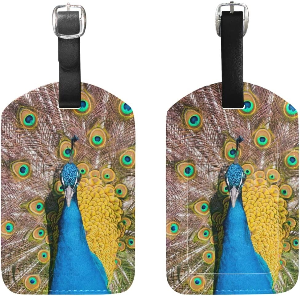 Chen Miranda Colorful Peacock Feather Luggage Tag PU Leather Travel Suitcase Label ID Tag Baggage claim tag for Trolley case Kids Bag 1 Piece