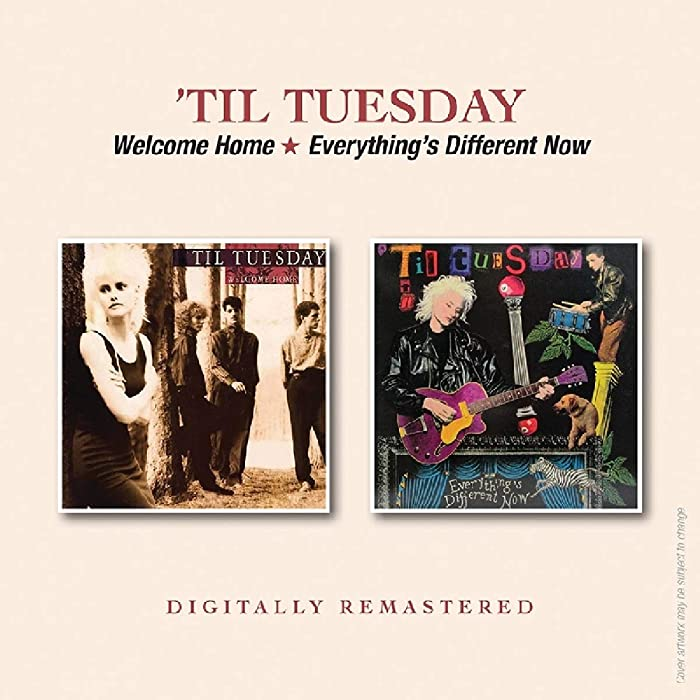 Top 9 Til Tuesday Welcome Home Vinyl