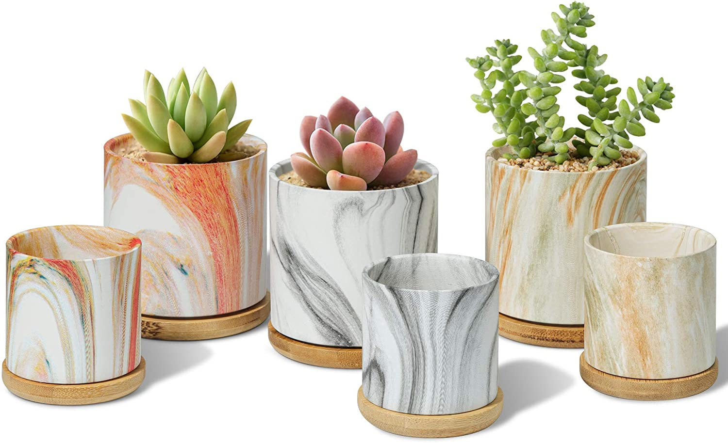 T4U Ceramic Plant Pot 3/2.5 Inch with Bamboo Tray Set of 6, Colorful Cylinder Succulent Pot Marbling Texture, Modern Small Flower Planter, Cactus Herb Container for Indoor Home Office Decor