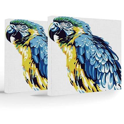 Amazon com: Birthday Decorations, Animal, Home Decoration