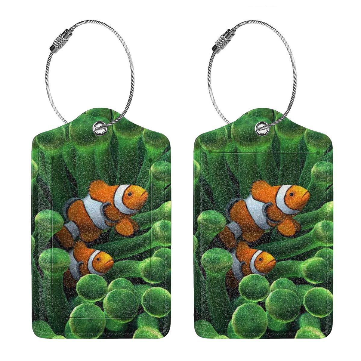 Underwater World With Fish Luggage Tags With Full Back Privacy Cover W//Steel Loops