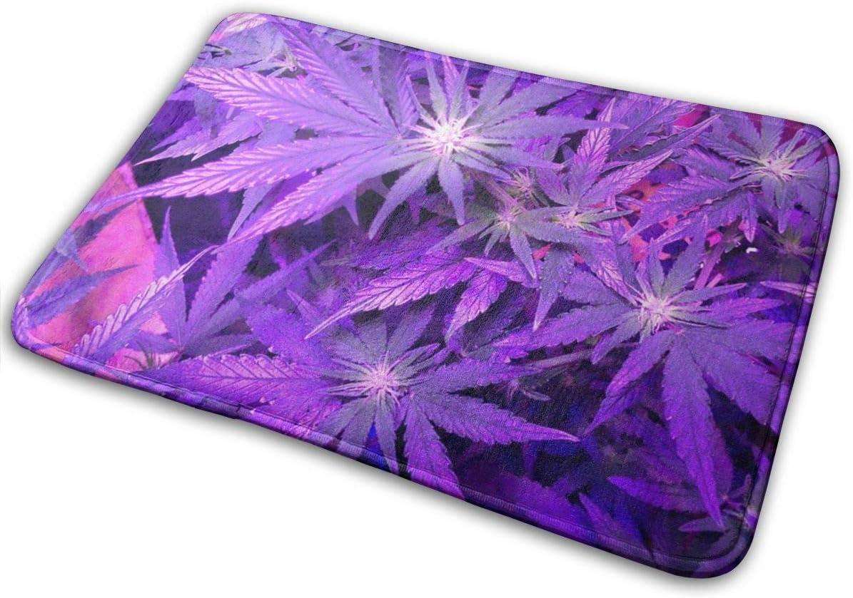 Peeeenny Beeen Felpudo Antideslizante Alfombrilla de Marihuana Purple Weed Alfombrillas de Bienvenida Alfombrilla Alfombrilla de Entrada Alfombrilla de Entrada de Piso para Interior/Exterior