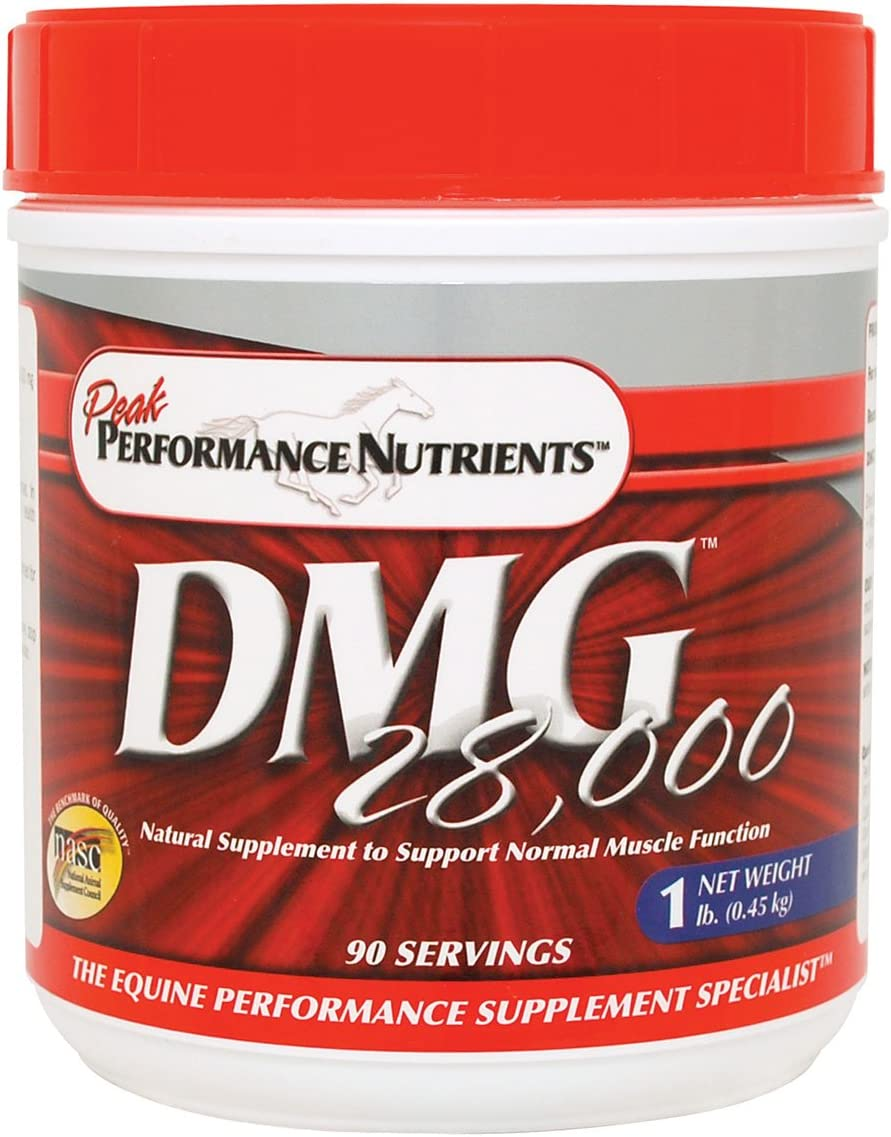 PEAKPERFORMANCE DMG 28000 1 lb