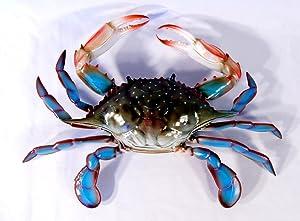 Charlotte International Large Replica Chesapeake Bay Blue Crab Wall Decor