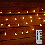 Tomshine 32.8ft 80 LED Battery Powered Globe String Lights Outdoor Decor for Patio Garden Party IP44 Water Resistance, 3 AA batteries (not provided)
