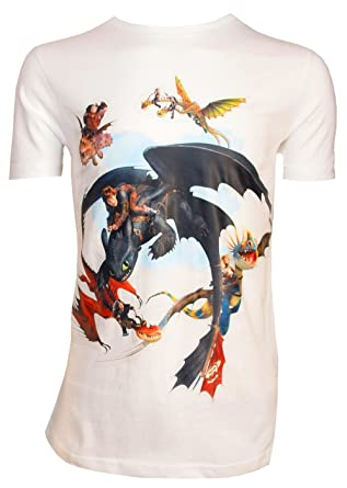 590b00802 Dreamworks Dragons Children's T-Shirt, Dragon Rider Friends - How to Train  your Dragon