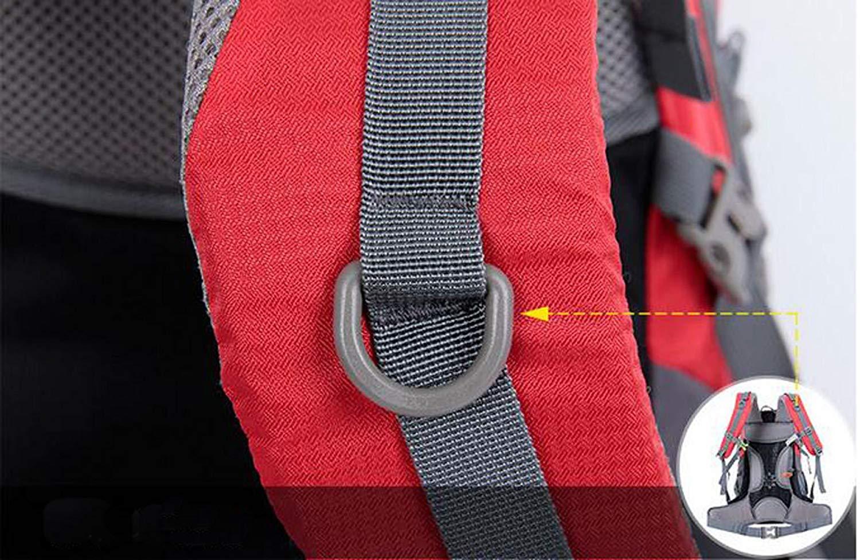 Eeayyygch Umhängetasche Outdoorrucksäcke Bergsteigenbeutel Reiserucksäcke Kapazität 55L 55L 55L MultiFarbe Optional, Rot (Farbe   Lila) B07KFZJKWY Turnbeutel Am praktischsten 45be1c