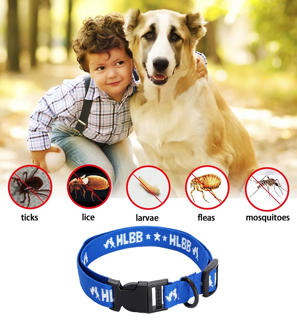 safe pet protection from pest bites infestations larvae lice mosquitoes JUNMO Flea and Tick Collar for All Kinds of Dogs and Cats Added with Natural Oils