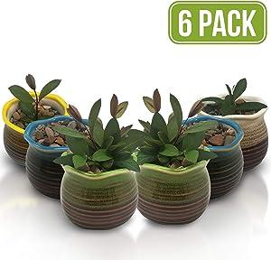 Succulent Pots 6 Pack - Mini Ceramic Pots 3.0 Inch, Small Flower, Planter, Bonsai, Cactus Pot with a Drainage Hole - Perfect Decoration Gift Idea