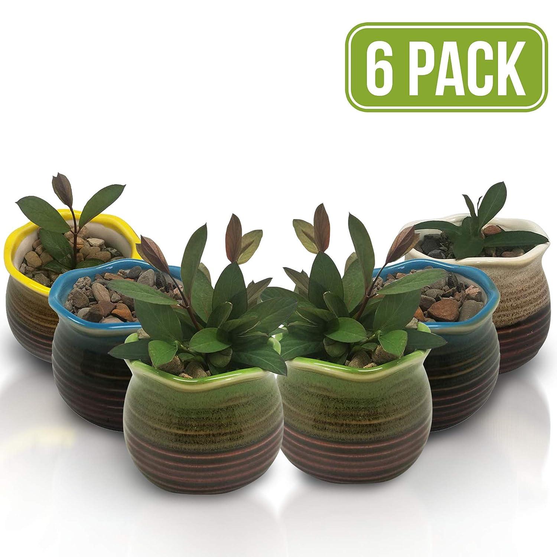 Succulent Pots 6 Pack – Mini Ceramic Pots 3.0 Inch, Small Flower, Planter, Bonsai, Cactus Pot with a Drainage Hole – Perfect Decoration Gift Idea